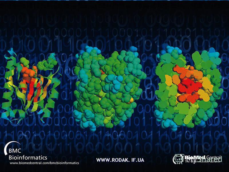 ЗАДАЧА Визначити молекулярну масу білка гемоглобіну, якщо вміст заліза в ньому 0,34%