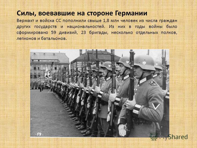 Силы, воевавшие на стороне Германии Вермахт и войска СС пополнили свыше 1,8 млн человек из числа граждан других государств и национальностей. Из них в годы войны было сформировано 59 дивизий, 23 бригады, несколько отдельных полков, легионов и батальо