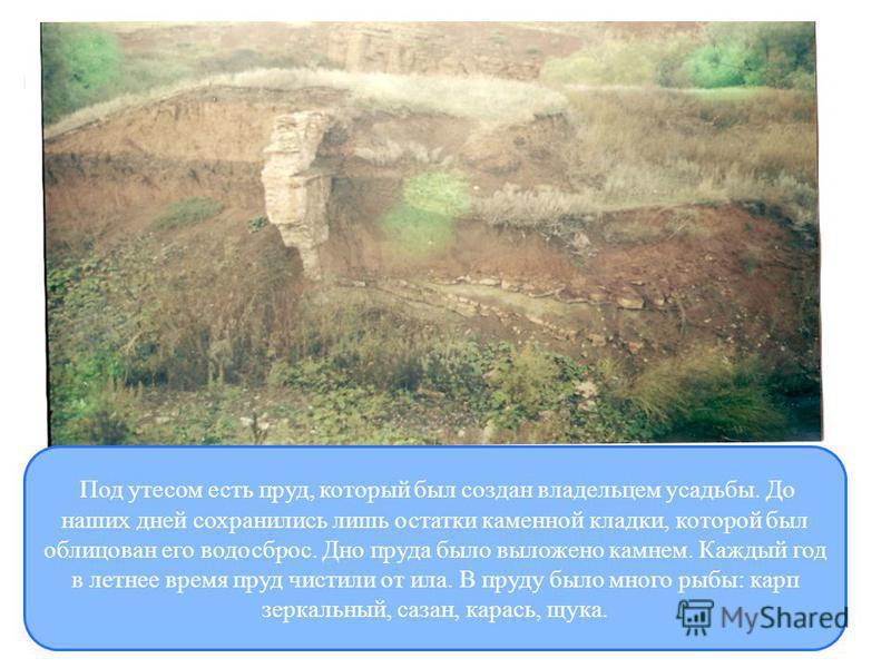 Под утесом есть пруд, который был создан владельцем усадьбы. До наших дней сохранились лишь остатки каменной кладки, которой был облицован его водосброс. Дно пруда было выложено камнем. Каждый год в летнее время пруд чистили от ила. В пруду было мног