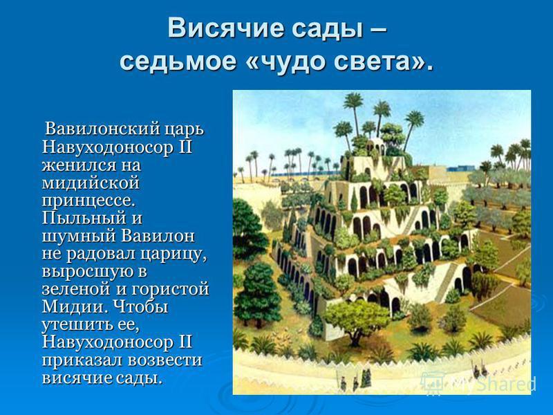 Висячие сады – седьмое «чудо света». Вавилонский царь Навуходоносор II женился на мидийской принцессе. Пыльный и шумный Вавилон не радовал царицу, выросшую в зеленой и гористой Мидии. Чтобы утешить ее, Навуходоносор II приказал возвести висячие сады.