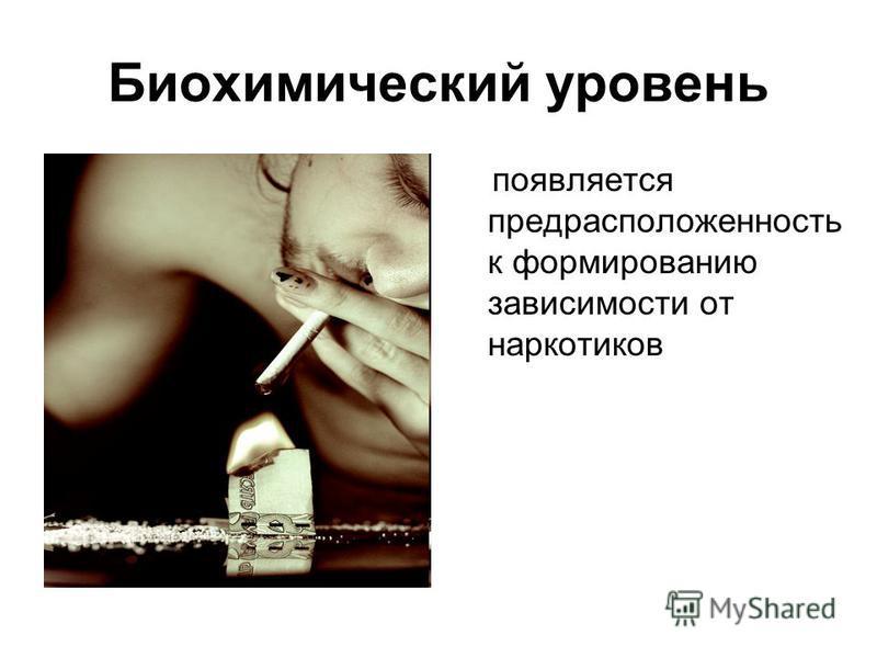Биохимический уровень появляется предрасположенность к формированию зависимости от наркотиков