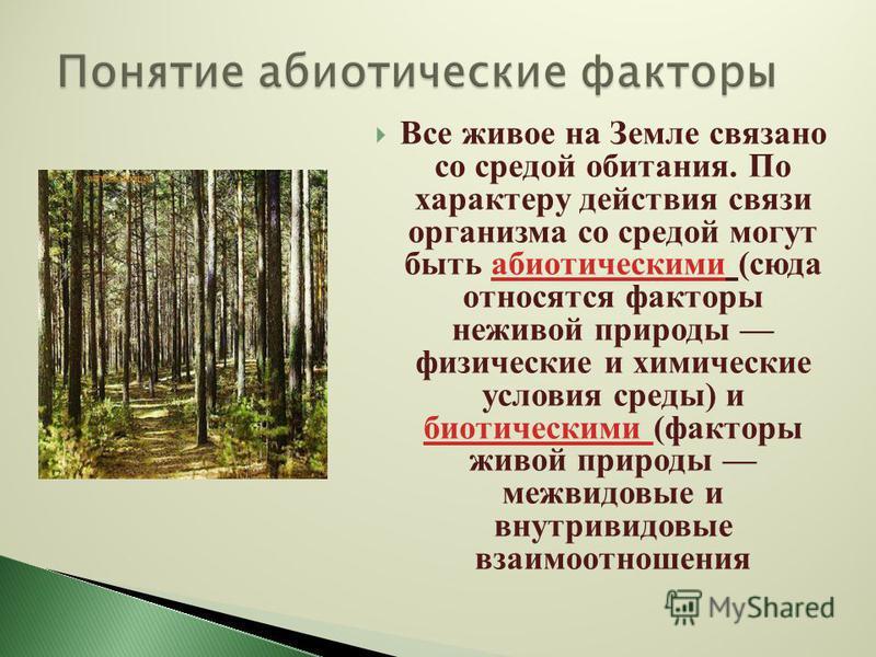 Все живое на Земле связано со средой обитания. По характеру действия связи организма со средой могут быть абиотическими (сюда относятся факторы неживой природы физические и химические условия среды) и биотическими (факторы живой природы межвидовые и