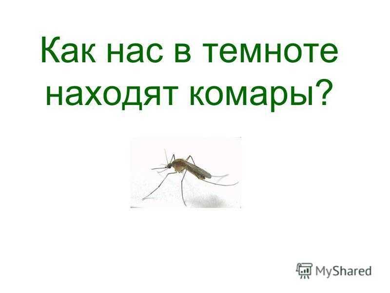 Как нас в темноте находят комары?