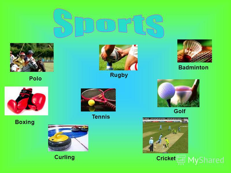 Polo Boxing Rugby Golf Tennis Badminton Curling Сricket