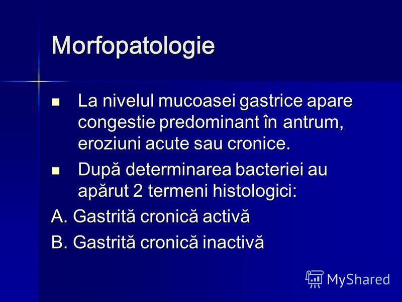 Morfopatologie La nivelul mucoasei gastrice apare congestie predominant în antrum, eroziuni acute sau cronice. La nivelul mucoasei gastrice apare congestie predominant în antrum, eroziuni acute sau cronice. După determinarea bacteriei au apărut 2 ter