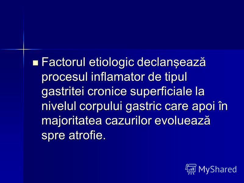 Factorul etiologic declanşează procesul inflamator de tipul gastritei cronice superficiale la nivelul corpului gastric care apoi în majoritatea cazurilor evoluează spre atrofie. Factorul etiologic declanşează procesul inflamator de tipul gastritei cr