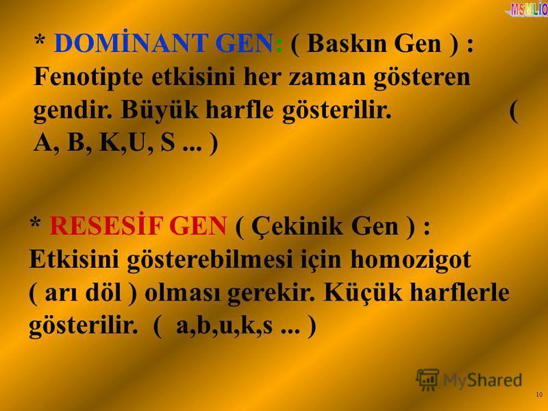 10 * DOMİNANT GEN: ( Baskın Gen ) : Fenotipte etkisini her zaman gösteren gendir. Büyük harfle gösterilir. ( A, B, K,U, S... ) * RESESİF GEN ( Çekinik Gen ) : Etkisini gösterebilmesi için homozigot ( arı döl ) olması gerekir. Küçük harflerle gösteril