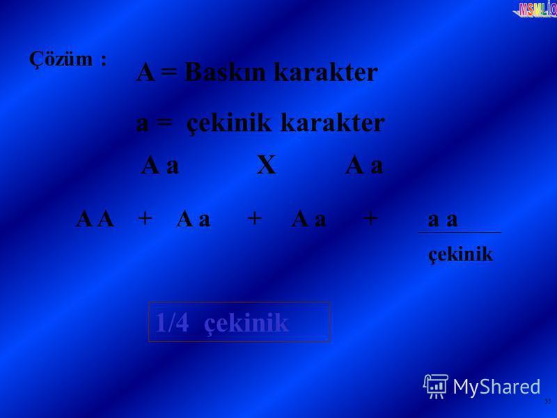 35 Çözüm : A = Baskın karakter a = çekinik karakter A a X A a A A + A a + A a + a a çekinik 1/4 çekinik