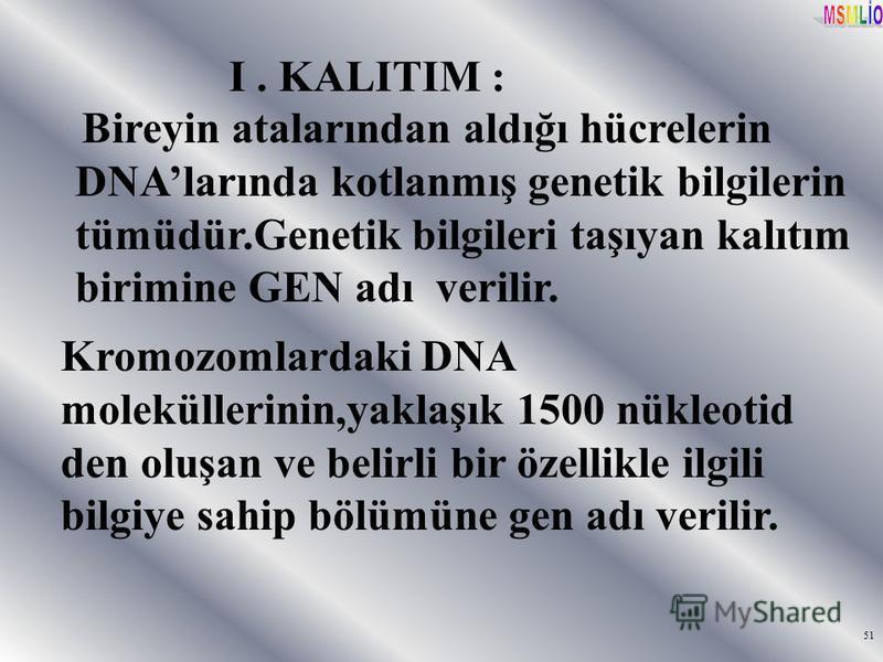 51 I. KALITIM : Bireyin atalarından aldığı hücrelerin DNAlarında kotlanmış genetik bilgilerin tümüdür.Genetik bilgileri taşıyan kalıtım birimine GEN adı verilir. Kromozomlardaki DNA moleküllerinin,yaklaşık 1500 nükleotid den oluşan ve belirli bir öze