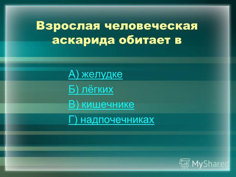Взрослая человеческая аскарида обитает в А) желудке Б) лёгких В) кишечнике Г) надпочечниках