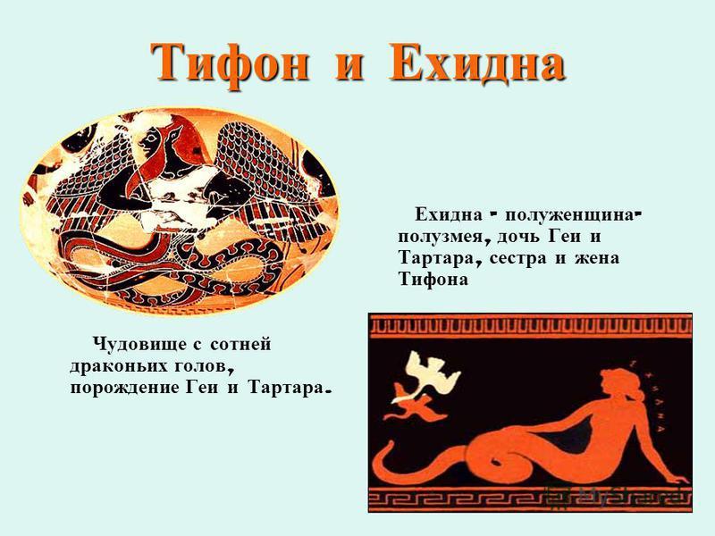 Тифон и Ехидна Чудовище с сотней драконьих голов, порождение Геи и Тартара. Ехидна – полуженщина - полузмея, дочь Геи и Тартара, сестра и жена Тифона
