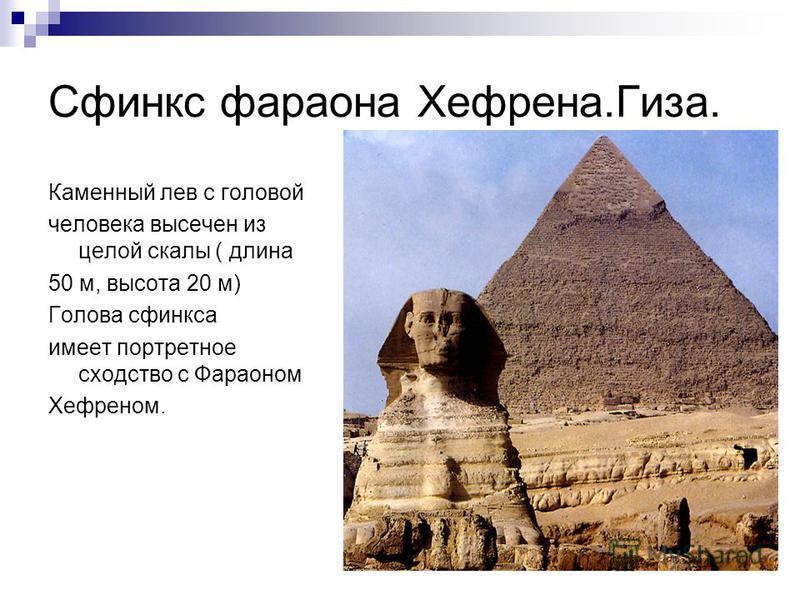 Сфинкс фараона Хефрена.Гиза. Каменный лев с головой человека высечен из целой скалы ( длина 50 м, высота 20 м) Голова сфинкса имеет портретное сходство с Фараоном Хефреном.