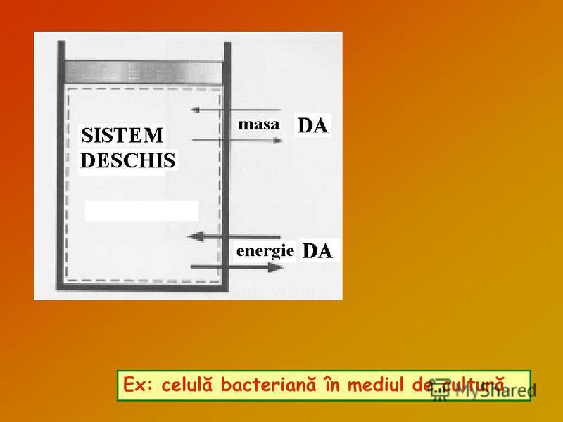 Ex: celulă bacteriană în mediul de cultură