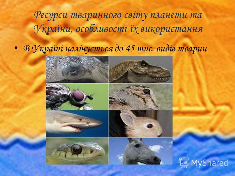 Ресурси тваринного світу планети та України, особливості їх використання В Україні налічується до 45 тис. видів тварин