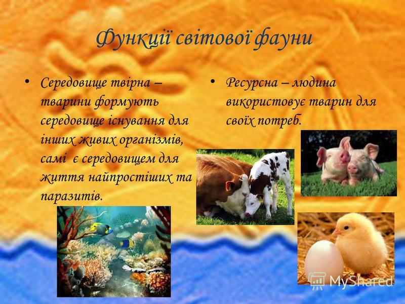 Функції світової фауни Середовище твірна – тварини формують середовище існування для інших живих організмів, самі є середовищем для життя найпростіших та паразитів. Ресурсна – людина використовує тварин для своїх потреб.