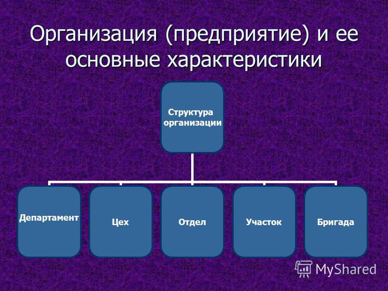 Организация (предприятие) и ее основные характеристики Структура организации Департамент Цех ОтделУчасток Бригада