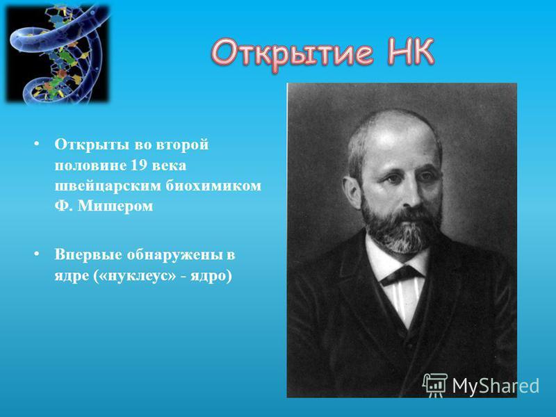 Открыты во второй половине 19 века швейцарским биохимиком Ф. Мишером Впервые обнаружены в ядре («нуклеус» - ядро)