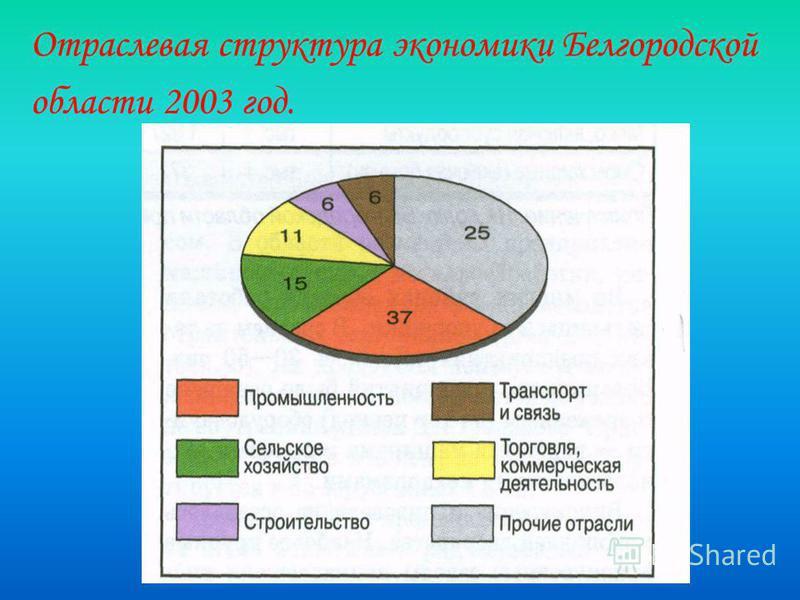 Отраслевая структура экономики Белгородской области 2003 год.