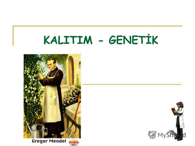 KALITIM - GENETİK