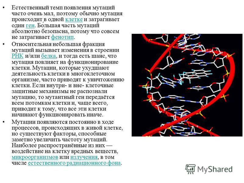 Естественный темп появления мутаций часто очень мал, поэтому обычно мутация происходит в одной клетке и затрагивает один ген. Бо́льшая часть мутаций абсолютно безопасна, потому что совсем не затрагивает фенотип.клеткегенфенотип Относительная небольша