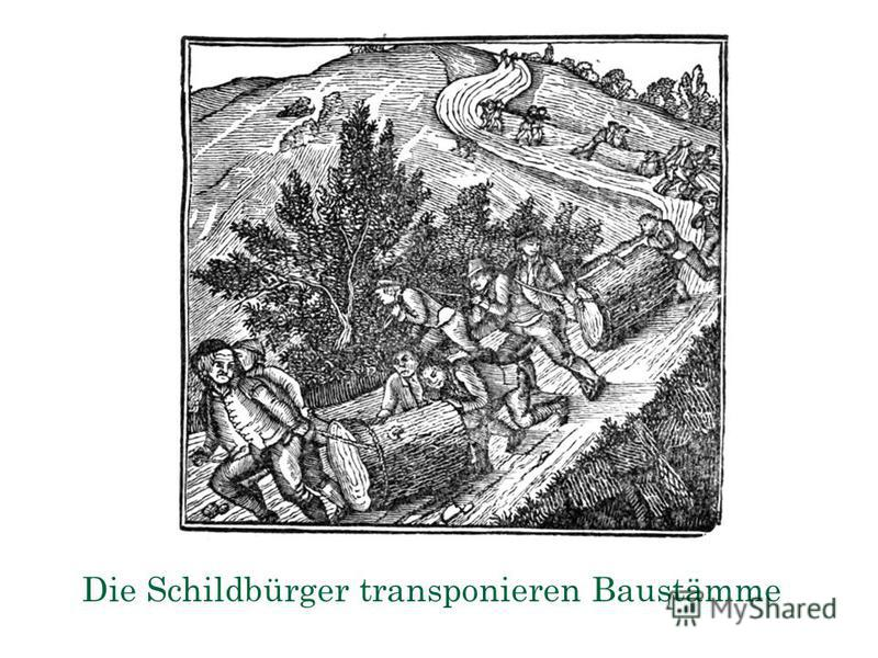 Die Schildbürger transponieren Baustämme