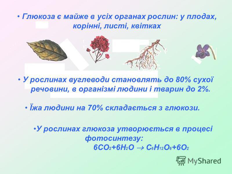 Глюкоза є майже в усіх органах рослин: у плодах, корінні, листі, квітках У рослинах вуглеводи становлять до 80% сухої речовини, в організмі людини і тварин до 2%. Їжа людини на 70% складається з глюкози. У рослинах глюкоза утворюється в процесі фотос