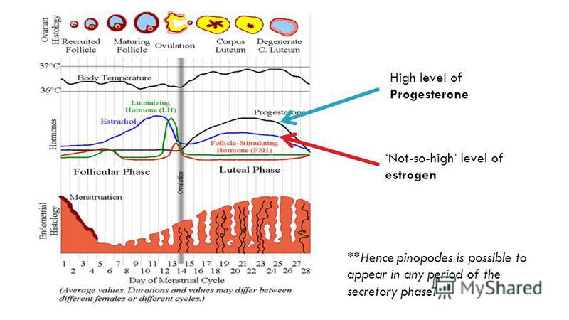 High level of Progesterone Not-so-high level of estrogen **Hence pinopodes is possible to appear in any period of the secretory phase!