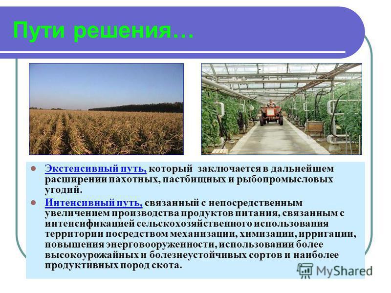 Пути решения… Экстенсивный путь, который заключается в дальнейшем расширении пахотных, пастбищных и рыбопромысловых угодий. Интенсивный путь, связанный с непосредственным увеличением производства продуктов питания, связанным с интенсификацией сельско