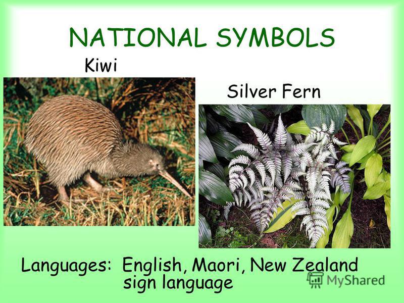 NATIONAL SYMBOLS Kiwi Silver Fern Languages: English, Maori, New Zealand sign language