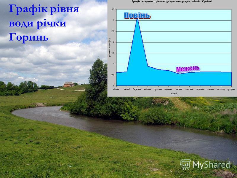 Графік рівня води річки Горинь