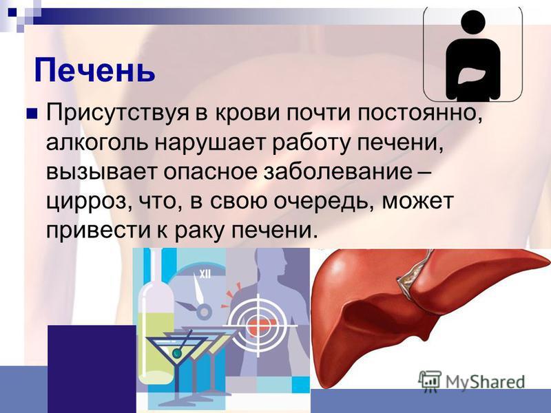 Печень Присутствуя в крови почти постоянно, алкоголь нарушает работу печени, вызывает опасное заболевание – цирроз, что, в свою очередь, может привести к раку печени.