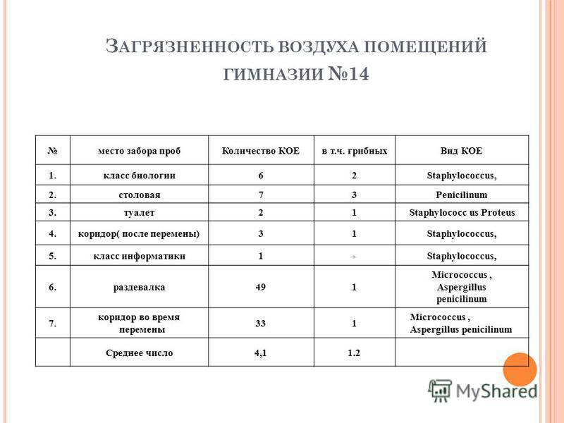 З АГРЯЗНЕННОСТЬ ВОЗДУХА ПОМЕЩЕНИЙ ГИМНАЗИИ 14 место забора проб Количество КОЕв т.ч. грибных Вид КОЕ 1. класс биологии 62Staphylococcus, 2.столовая 73Penicilinum 3.туалет 21Staphylococc us Proteus 4.коридор( после перемены)31Staphylococcus, 5. класс