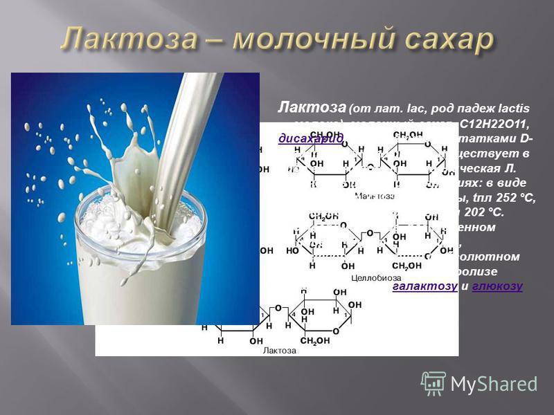 Лактоза (от лат. lac, род падеж lactis молоко), молочный сахар, C12H22O11, дисахарид, образованный остатками D- галактозы и D-глюкозы; существует в виде a- и b-форм. Кристаллическая Л. получена в трёх модификациях: в виде a-формы, апл 223 °С, b-формы