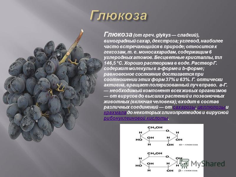 Глюкоза (от греч. glykys сладкий), виноградный сахар, декстроза; углевод, наиболее часто встречающийся в природе; относится к гексозам, т. е. моносахаридам, содержащим 6 углеродных атомов. Бесцветные кристаллы, апл 146,5 °С. Хорошо растворима в воде.