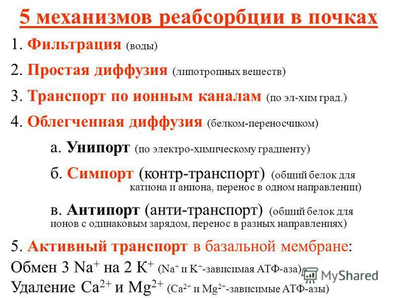 5 механизмов реабсорбции в почках 1. Фильтрация (воды) 2. Простая диффузия (липотропных веществ) 3. Транспорт по ионным каналам (по эл-хим град.) 4. Облегченная диффузия (белком-переносчиком) а. Унипорт (по электро-химическому градиенту) б. Симпорт (