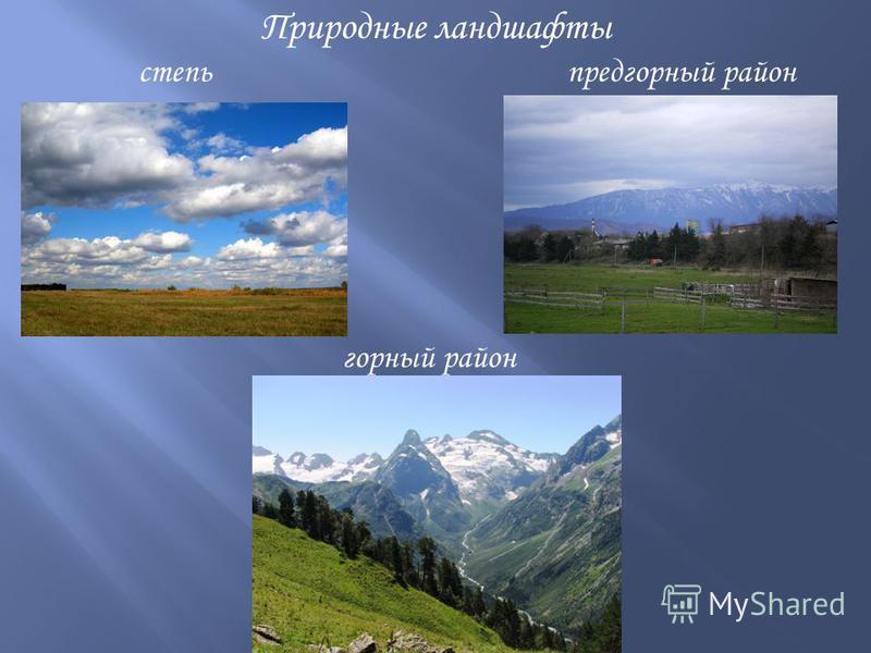 Природные ландшафты степь предгорный район горный район
