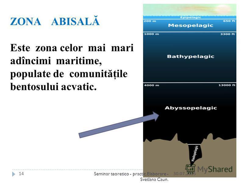 ZONA ABISALĂ Este zona celor mai mari adîncimi maritime, populate de comunităţile bentosului acvatic. 30.07.201514Seminar teoretico - practic.Elaborare - Svetlana Caun.