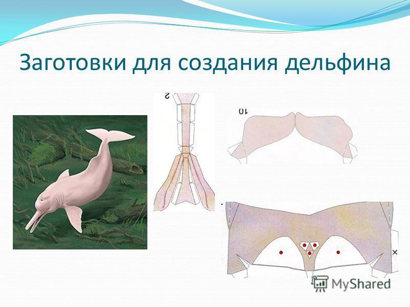 Заготовки для создания дельфина