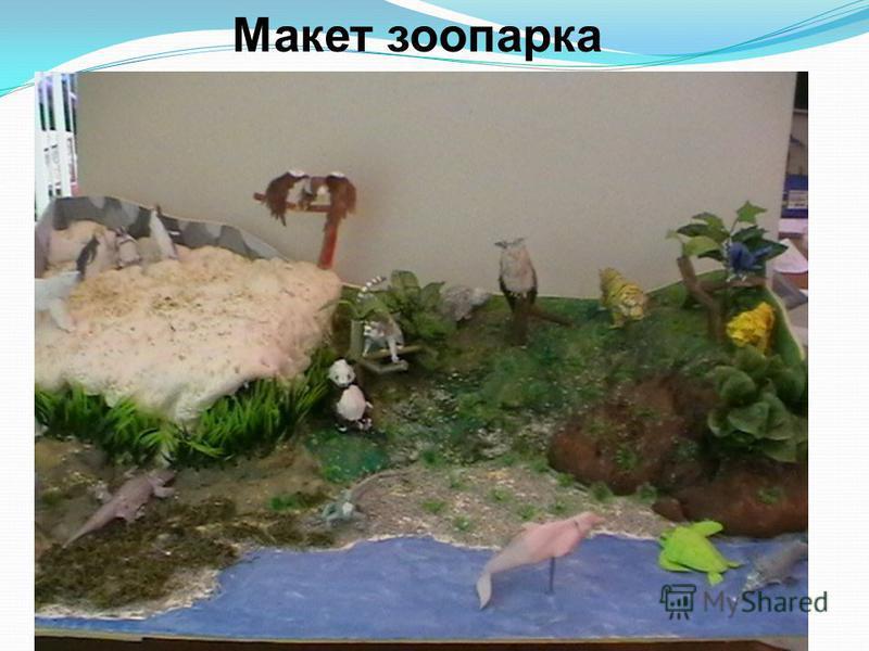 Макет зоопарка