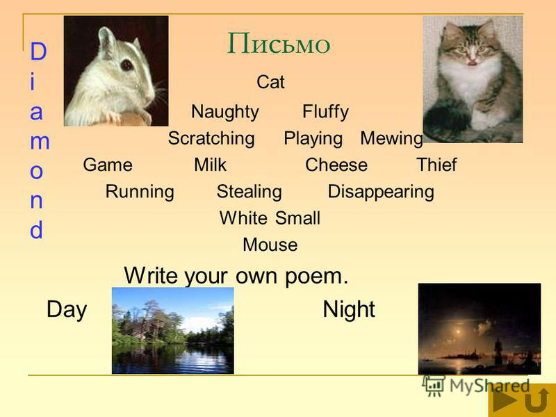 Письмо Cat NaughtyFluffy ScratchingPlaying Mewing Game Milk CheeseThief RunningStealingDisappearing WhiteSmall Mouse Write your own poem. Day Night DiamondDiamond