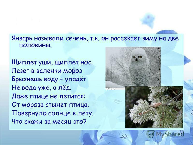 Январь называли сочень, т.к. он рассекает зиму на две половины. Щиплет уши, щиплет нос. Лезет в валенки мороз Брызнешь воду – упадёт Не вода уже, а лёд. Даже птице не лечится: От мороза стынет птица. Повернуло солнце к лету. Что скажи за месяц это?