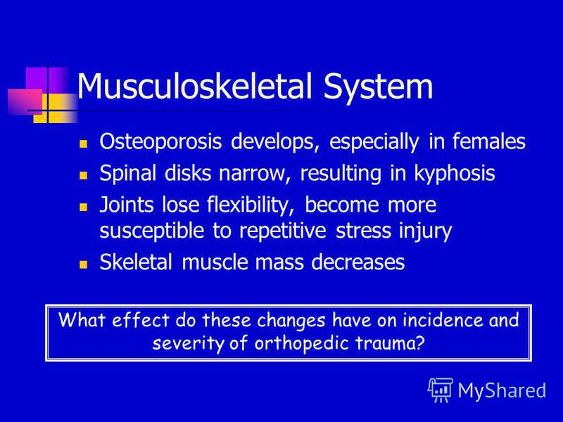 Musculoskeletal System Osteoporosis develops, especially in females Spinal disks narrow, resulting in kyphosis Joints lose flexibility, become more susceptible to repetitive stress injury Skeletal muscle mass decreases What effect do these changes ha