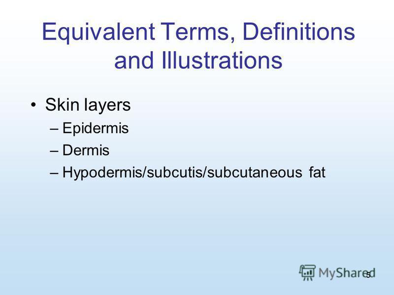 5 Equivalent Terms, Definitions and Illustrations Skin layers –Epidermis –Dermis –Hypodermis/subcutis/subcutaneous fat