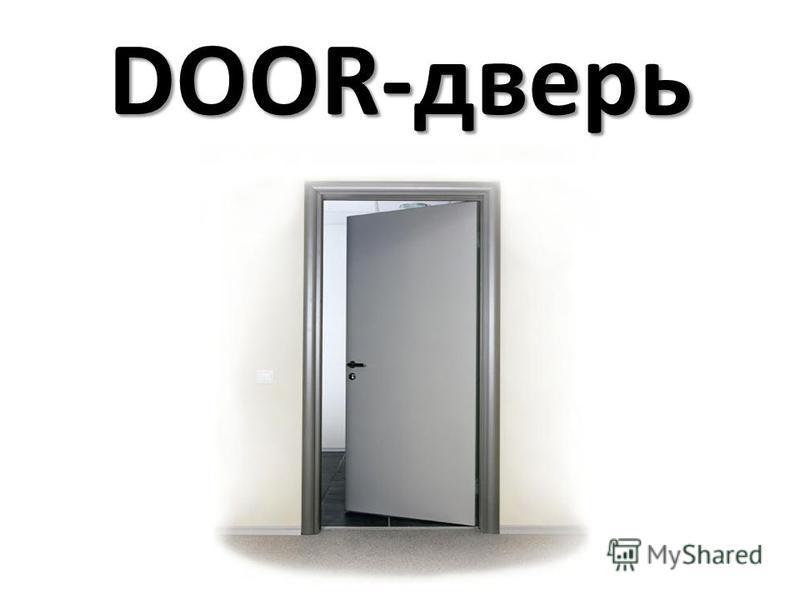 DOOR-дверь