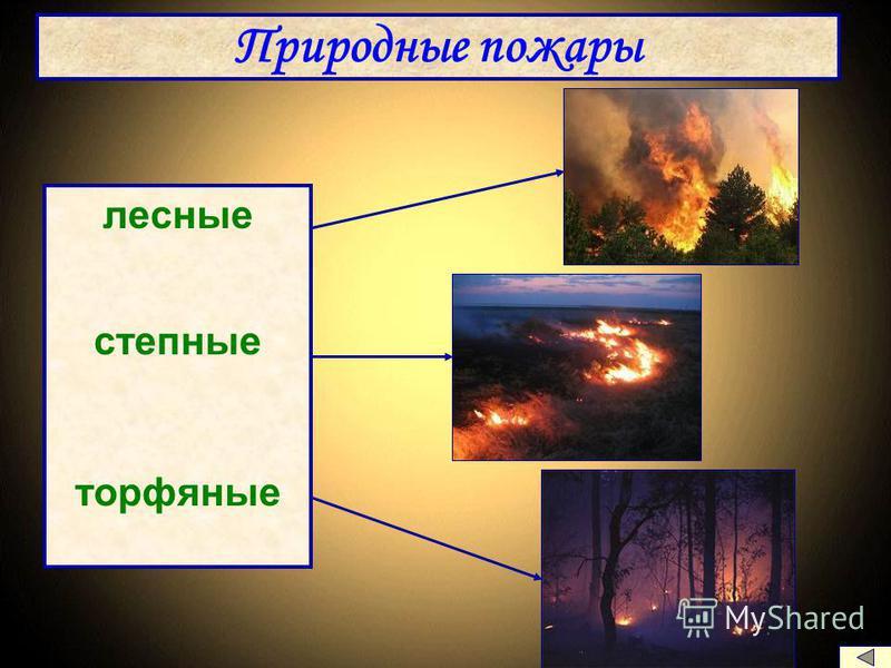 Природные пожары лесные степные торфяные