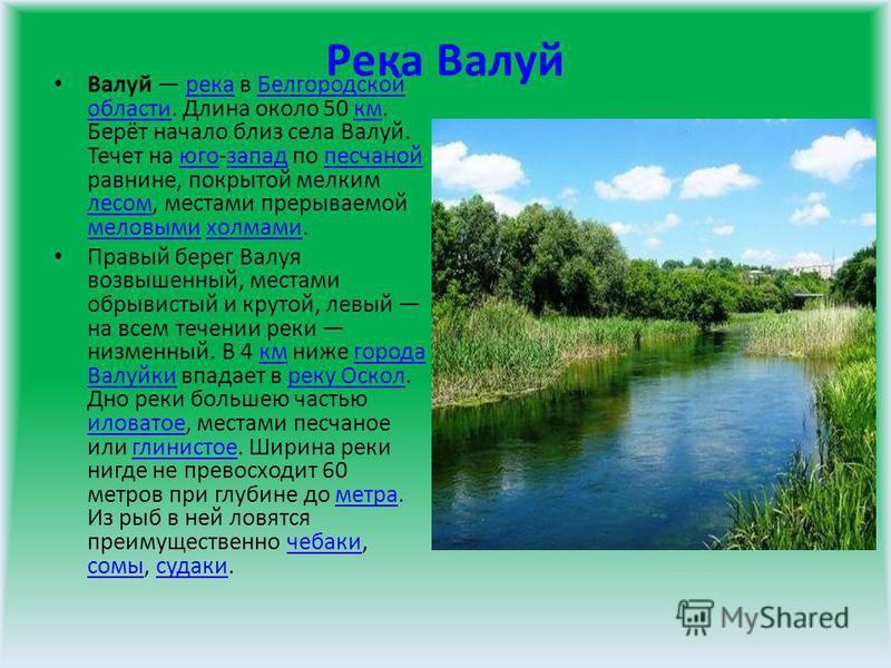 Река Валуй Валуй река в Белгородской области. Длина около 50 км. Берёт начало близ села Валуй. Течет на юго-запад по песчаной равнине, покрытой мелким лесом, местами прерываемой меловыми холмами.река Белгородской областикмюгозападпесчаной лесом мелов