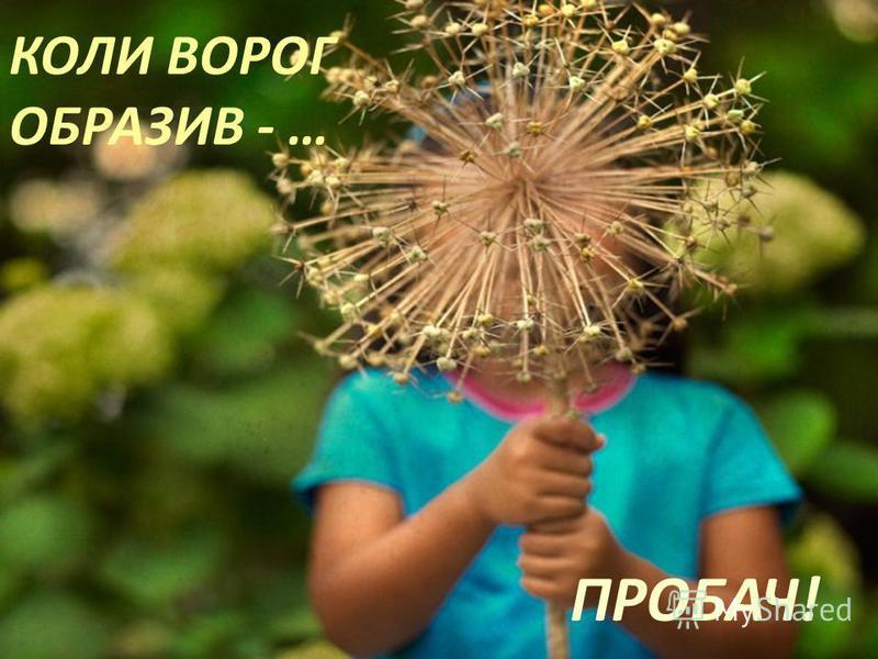КОЛИ ВОРОГ ОБРАЗИВ - … ПРОБАЧ!