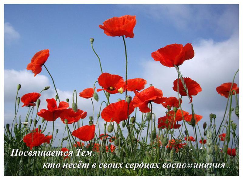 Посвящается Тем, кто несёт в своих сердцах воспоминания.. кто несёт в своих сердцах воспоминания..