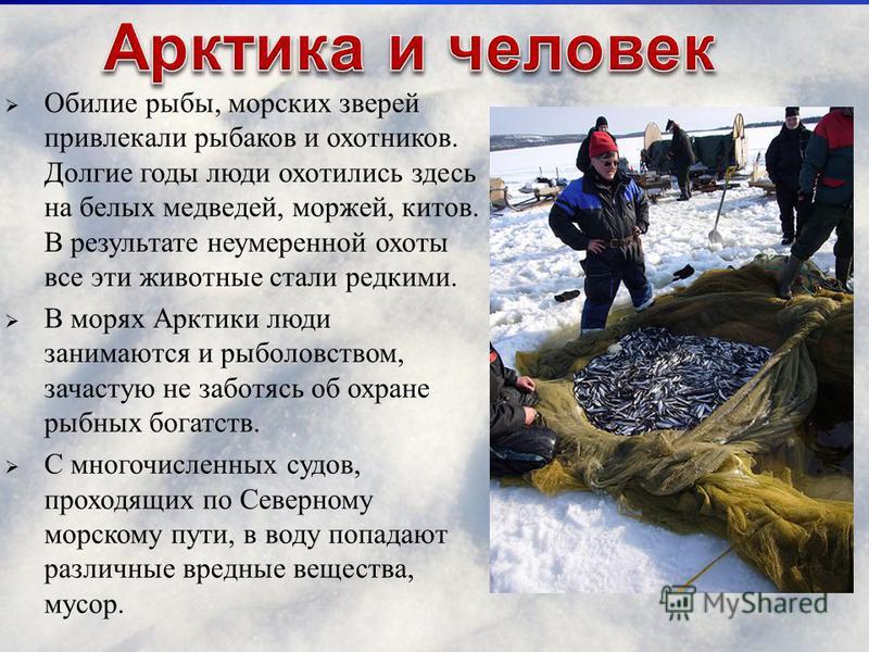 Обилие рыбы, морских зверей привлекали рыбаков и охотников. Долгие годы люди охотились здесь на белых медведей, моржей, китов. В результате неумеренной охоты все эти животные стали редкими. В морях Арктики люди занимаются и рыболовством, зачастую не