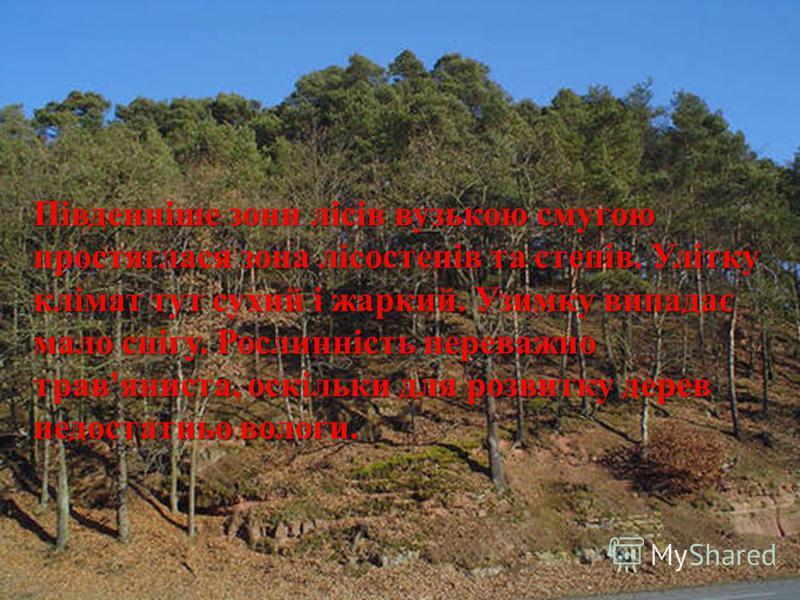 Південніше зони лісів вузькою смугою простяглася зона лісостепів та степів. Улітку клімат тут сухий і жаркий. Узимку випадає мало снігу. Рослинність переважно трав ' яниста, оскільки для розвитку дерев недостатньо вологи.